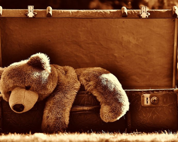 Knuffelbeer in Koffer